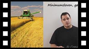 Minimumsloven