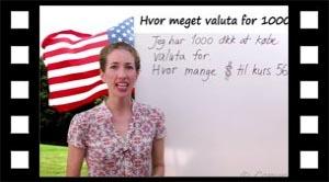 Hvor mange dollars for 1000 dkk