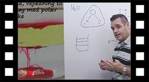 Aktivitet: Prøv at blande polære og ikke polære væsker